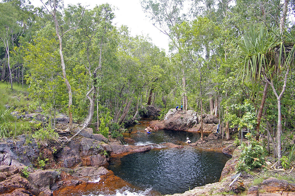​Litchfield National Park's Top Swimming Spots